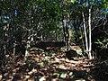 樟林登山道 - Zhanglin Mountain Trail - 2015.01 - panoramio.jpg