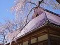 西光寺 宇陀市室生 2013.4.13 - panoramio (1).jpg