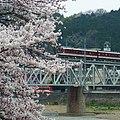 近鉄吉野線 吉野川橋梁 2012.4.10 - panoramio.jpg
