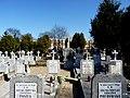 - Cmentarz Nowofarny - panoramio (14).jpg