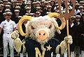 000902-N-9848G-002 - U.S. Naval Academy mascot.jpg