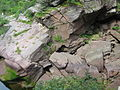 094 - Fundy National Park.JPG