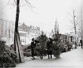 12-08-1958 15601 Kerstbomenverkoop (2827164287).jpg