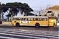 12892-Filobus Alfa Romeo 1000 Aerfer 8039.jpg