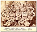 1901 Milwaukee Brewers.jpg