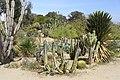 1935 (Old) Cactus Garden 1.JPG