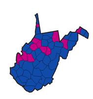 1958 West Virginia Senate Elections.png