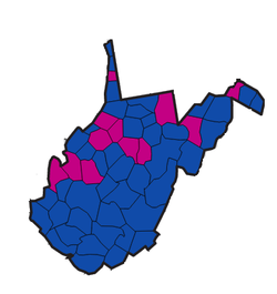 1958 West Virginia Senate Elections.png
