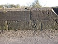 1GL bench mark on Sutton Bridge - geograph.org.uk - 1745271.jpg