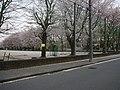 1 Chome Kōnandai, Kashiwa-shi, Chiba-ken 277-0942, Japan - panoramio.jpg