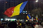 1 February Romanian protest4 (cropped).jpg