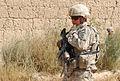 2-87 Inf. Reg. Soldiers Patrol Mayden Shahr, Afghanistan DVIDS199587.jpg