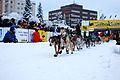 2010 Yukon Quest (4340855551).jpg