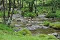 2011-06-06 14-14-55 Switzerland Cantone Ticino Frasco.jpg