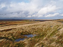 Moorland with Stone building in the distance.