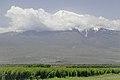 2014 Prowincja Ararat, Widok na Wielki Ararat (01).jpg