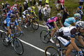 2014 Tour de France stage 2, near Littleborough (peloton)(6).JPG