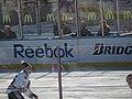 2015 NHL Winter Classic IMG 7868 (15701432893).jpg