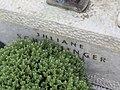 2017-09-10 Friedhof St. Georgen an der Leys (269).jpg