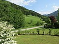 2018-05-13 (243) Nature near Bichlhäusl in Frankenfels, Austria and view to south-east.jpg