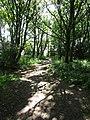 2018-06-13 Norfolk coast path, Trimingham (3).JPG