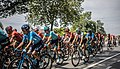 2019 - Tour de France - Enghien (48213925756) (cropped3).jpg
