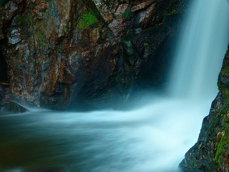 Rivière en pleine forêt 800px-2020-12-28_16-43-43_savoureuse-Lepuix