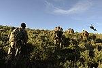 211th Aviation Battalion annual training 130609-F-PD696-180.jpg