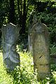 225viki Cmentarz Żydowski na Ślężnej. Barbara Maliszewska.jpg