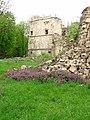 61-105-0008 Руїни бережанського замку.jpg
