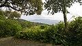 83230 Bormes-les-Mimosas, France - panoramio (24).jpg
