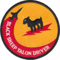 8th Fighter Squadron T-38 patch.png