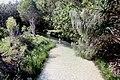 A0111 Australia Fraser Island Eli Creek (5051663165).jpg
