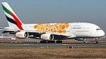 A6-EOA Emirates A388 FRA (46239435325).jpg