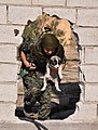 A YPJ fighter carries a puppy through a hole in the wall.jpg