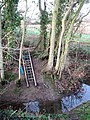 A ladder up a slippery slope - geograph.org.uk - 1612588.jpg