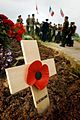 A lone remembrance cross stands proud at Juno Beach. MOD 45145784.jpg