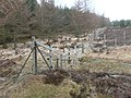 A tangle of fences - geograph.org.uk - 1233510.jpg