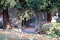 Abbaye de Saint-Wandrille (passage dans jardin) 1.jpg