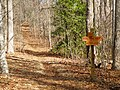 Addis Gap - WildCat Rd - panoramio.jpg
