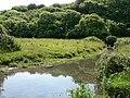 Afon Col-Huw, Llantwit Major - geograph.org.uk - 846879.jpg