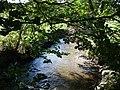 Afon Wyre at Tyncoed - geograph.org.uk - 256354.jpg