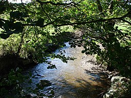 Afon Wyre at Tyncoed - geograph.org.uk - 256354.jpg