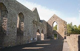 Aghaboe Hamlet in Leinster, Ireland