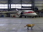 Air Koryo Antonov An-148-100V.jpg