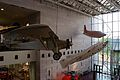 Aircraft at the National Air and Space Museum, Washington.jpg