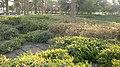Alain al jaheli park ,United Arab Emirates - panoramio (21).jpg