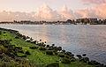 Alameda Marina (15386878201).jpg