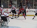 Albany Devils vs. Portland Pirates - December 28, 2013 (11622110195).jpg