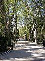 Algeciras Paseo Cristina.jpg